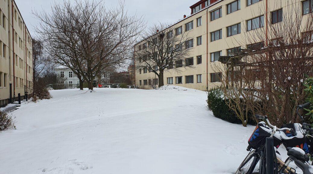 vinter 2021